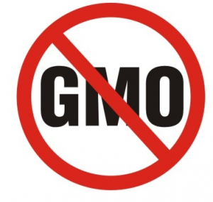 Genetically Modified Organisms (GMOs): Interesting information that may shock you.