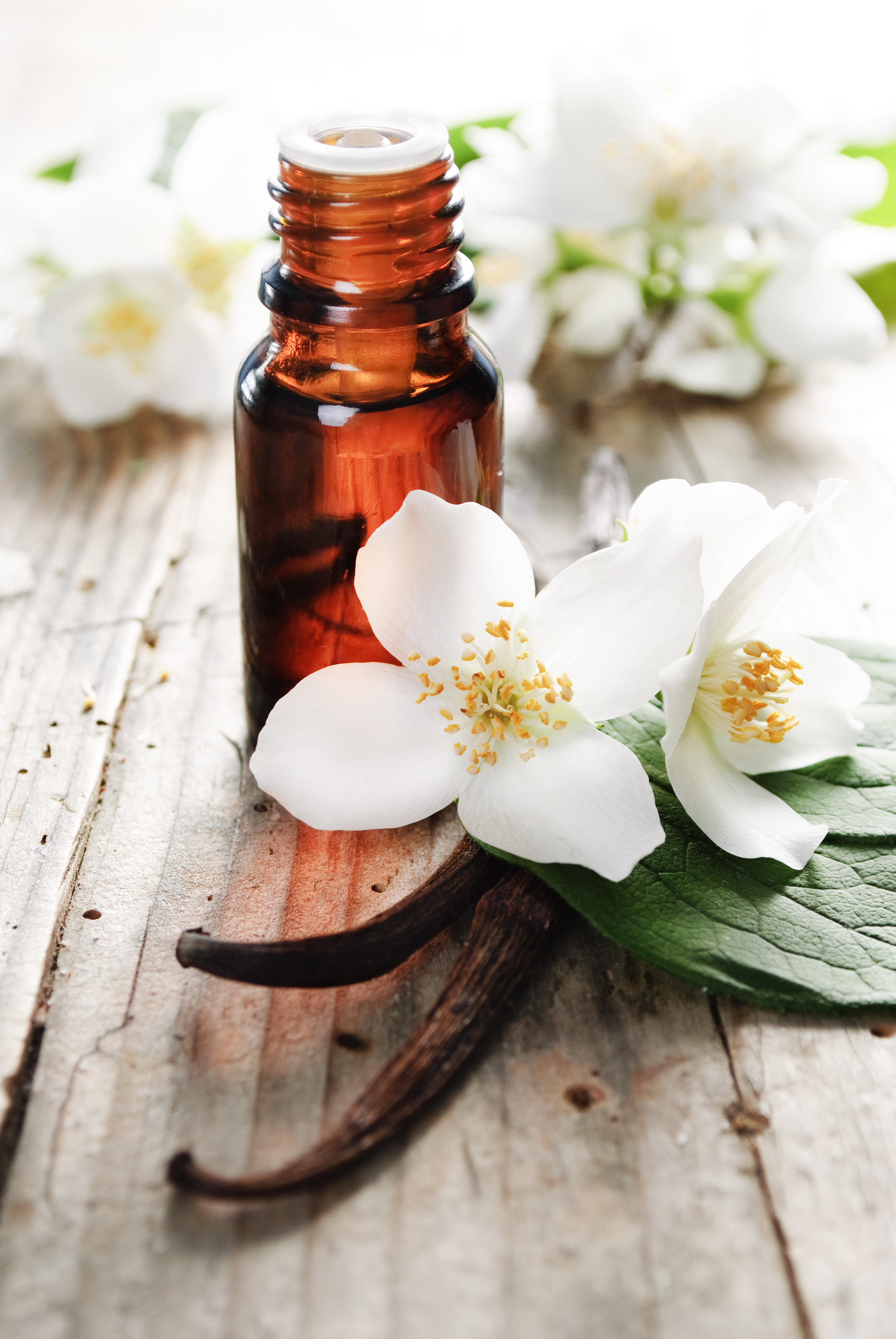 vanilla_essential_oil_with_flower_and_bean