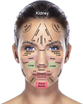 How Your Face Reflects the Health of Your Organs