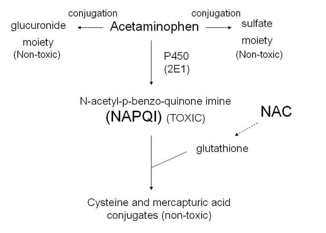 Acetaminophen Toxic NAPQI