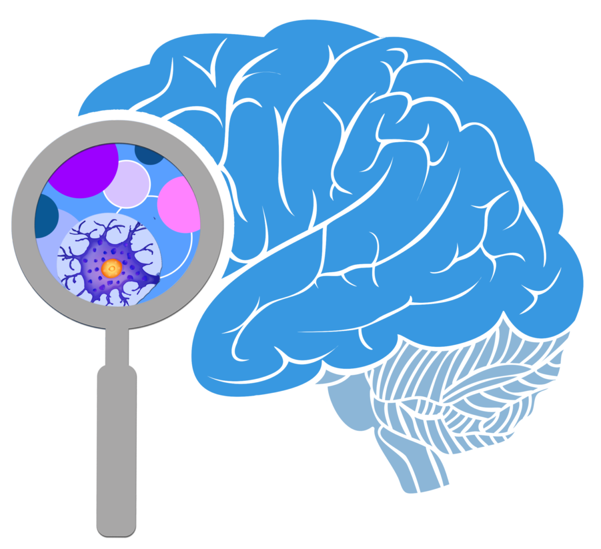 Omega 3s and the brain
