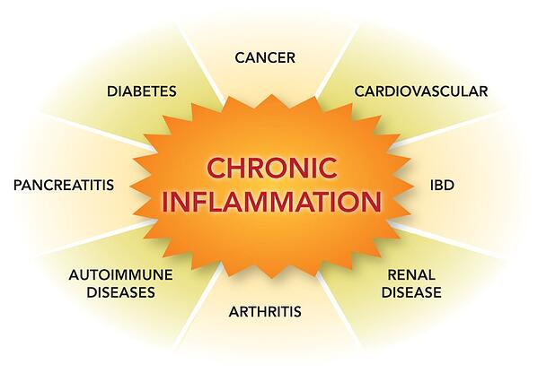3 Important Steps To Reducing Chronic Inflammation And Significantly Improving Your Health & Well-Being