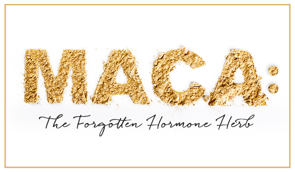 Maca The Forgotten Hormone Herb