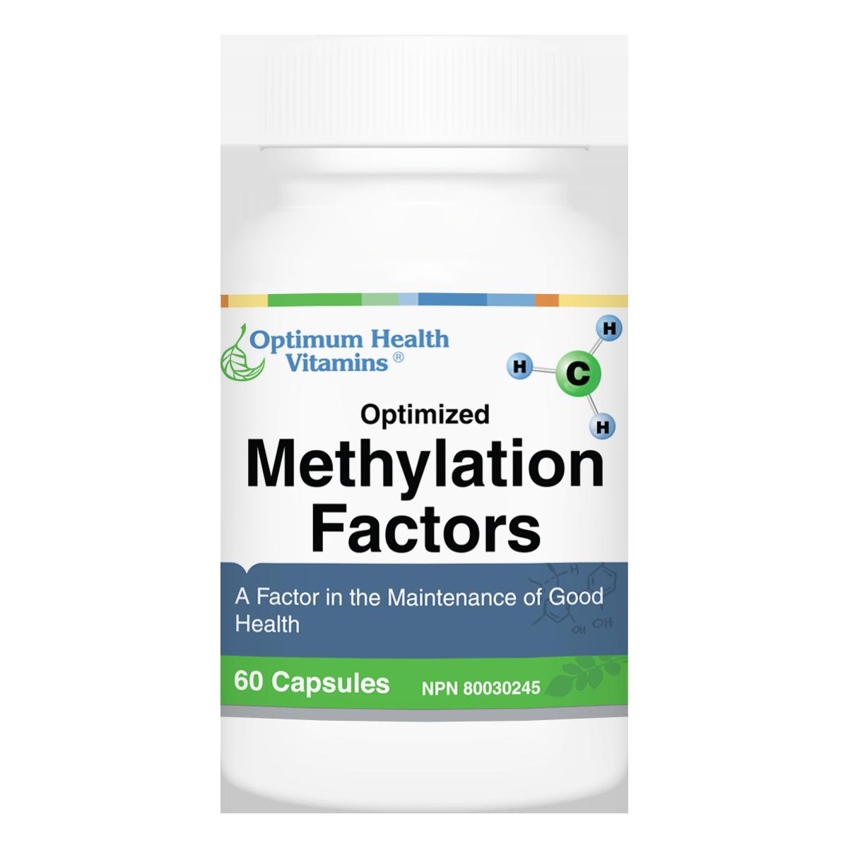 Methylation_Factors.png
