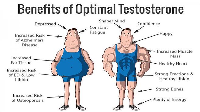 Natural Testosterone Boosters - Fact or Fiction?.jpg