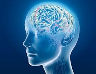 Brain Energy Supplement