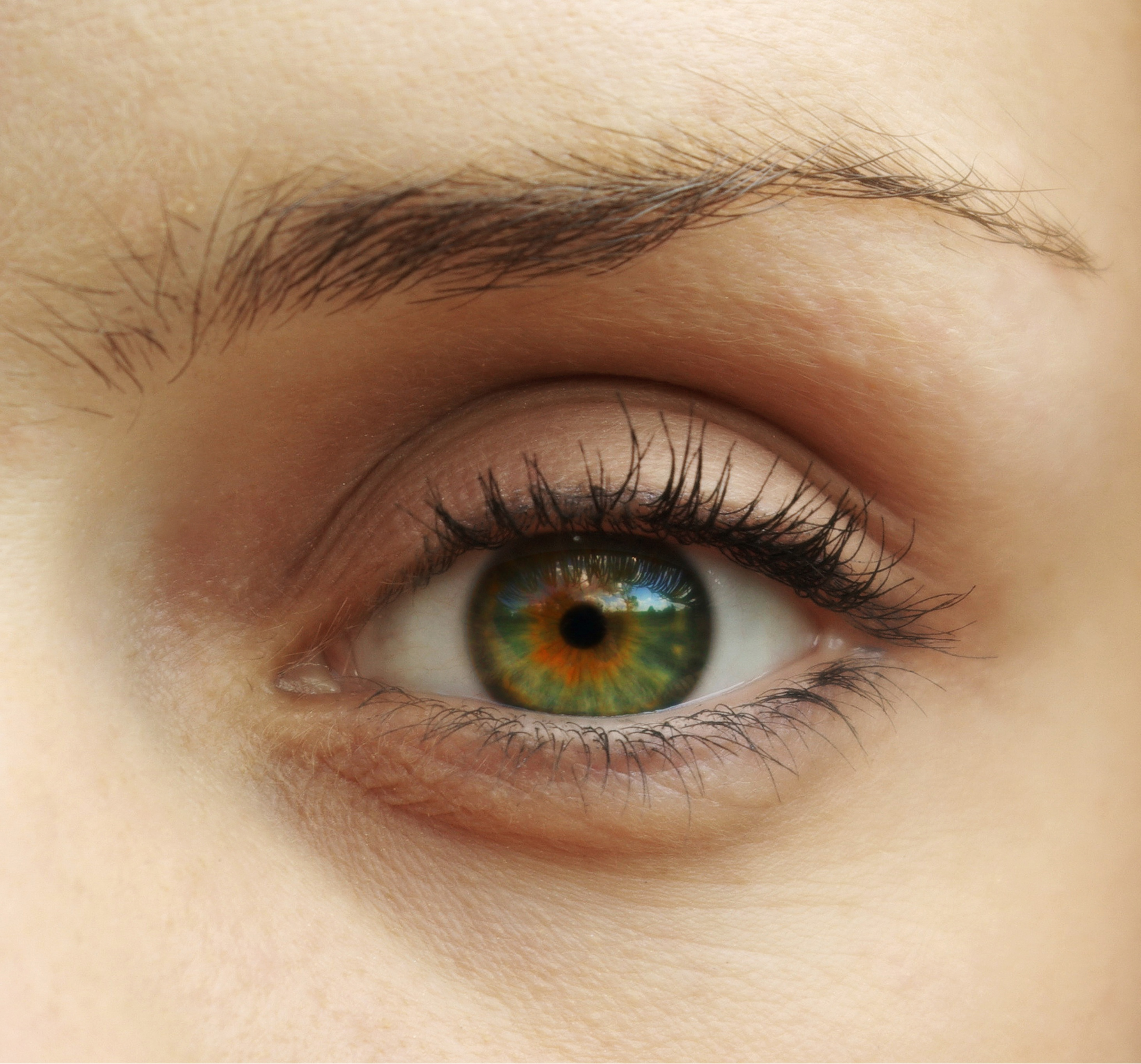 What is Macular Degeneration