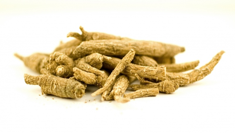 best ginseng for energy