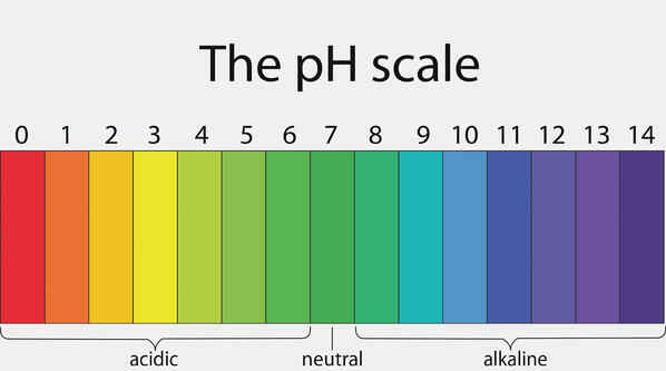 Your Vital Energy Depends on Optimal pH Balance