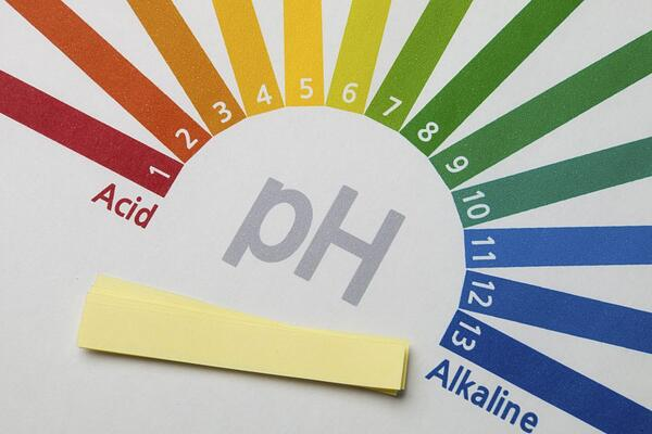 5 Health Benefits Of Maintaining An Alkaline Body-pH