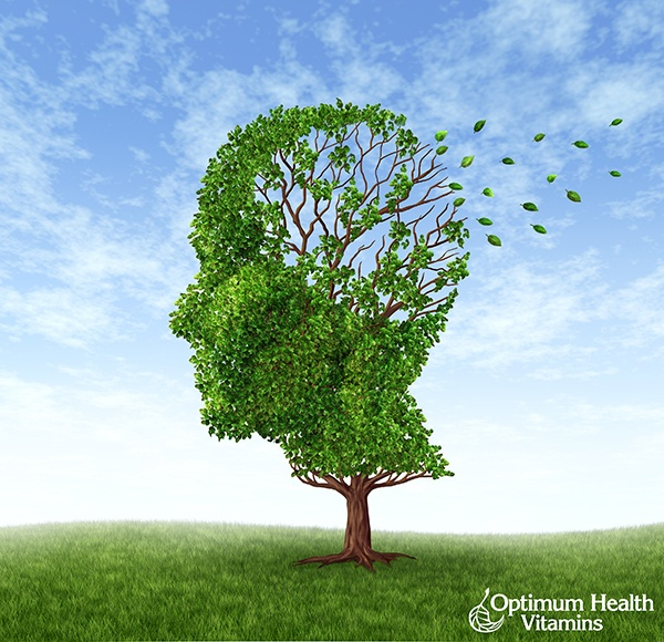 Insulin_resistance_directly_associated_with_Alzheimers